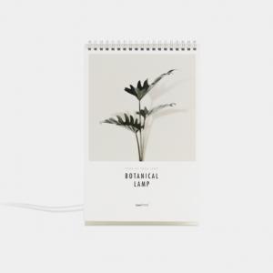 botanical-wp-800600